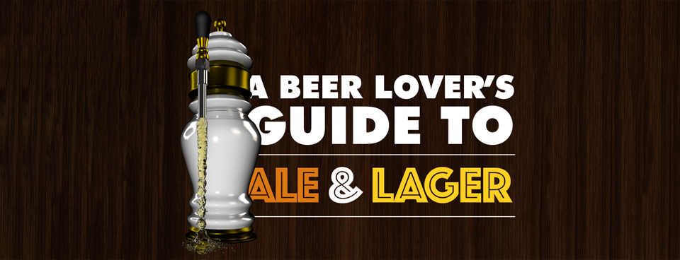 MyOffers Ale Lager Guide